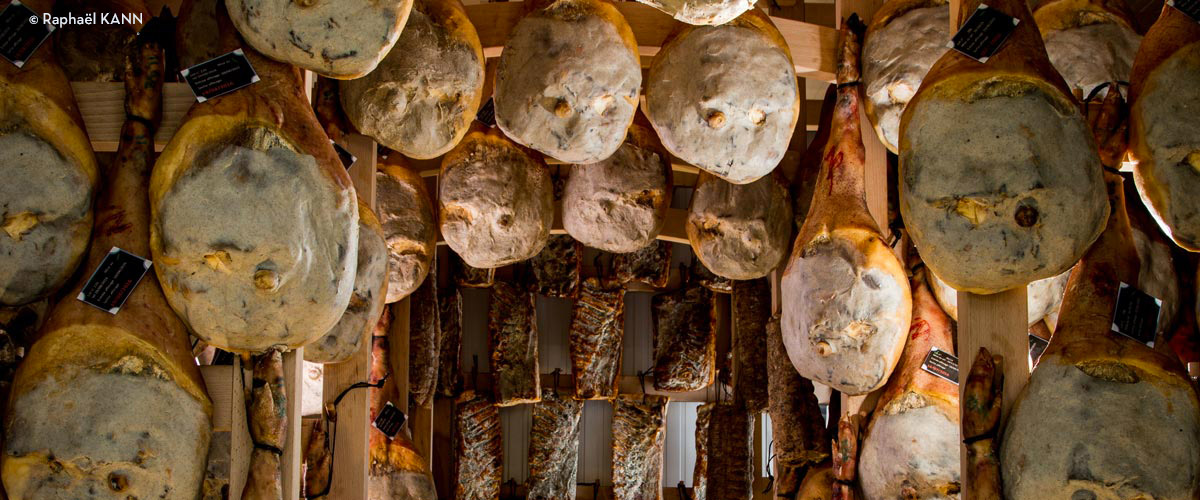 Pierre Sajous - Porc noir de Bigorre et cochon roux du Sud-Ouest